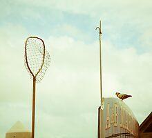 the net by Carol Fan