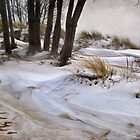 Blending Sand and Snow by Kathilee