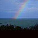 Rainbow  by Jan Carlton