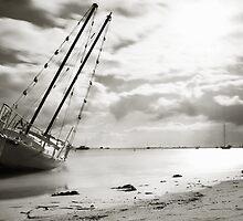 Beached... by SachaJaSu