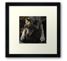 Hard pillow Framed Print