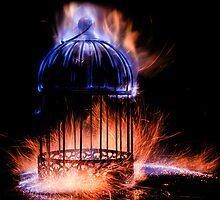 Forging The Cage 1 / 3 by Darren Bailey LRPS