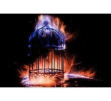Forging The Cage 1 / 3 Photographic Print