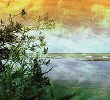 Summer Dreams by SRowe Art