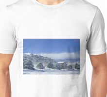 Colorado Chicken Coop Unisex T-Shirt