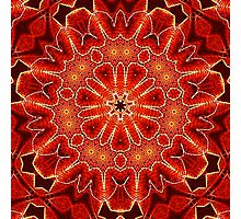 Mandala 23 Photographic Print