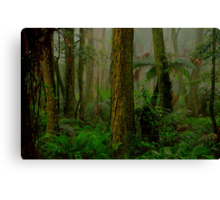 RainForrest Dreaming - Mount Wilson NSW - The HDR Experience Canvas Print