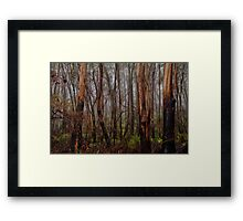 Charred Survivors - Mount Wilson - The HDR Experience Framed Print