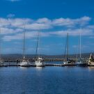 Albany Waterfront Marina, Western Australia #2 by Elaine Teague