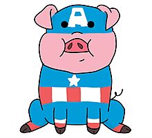 Captain Ameripig Waddles Photographic Print