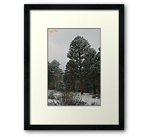 Winter's Magesty Framed Print