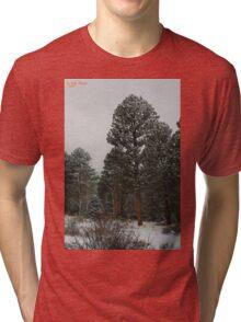 Winter's Magesty Tri-blend T-Shirt