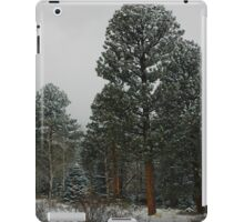 Winter's Magesty iPad Case/Skin