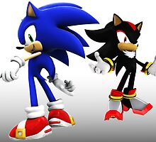 Sonic and Shadow the Hedgehogs by Ben Ashworth