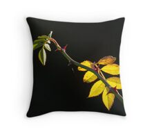 Rose Leaves Backlit Throw Pillow