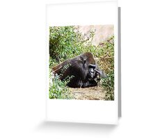 Is That An Opinion Or Do You Have An Itch? Greeting Card