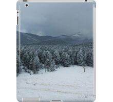 Mountain Beauty iPad Case/Skin