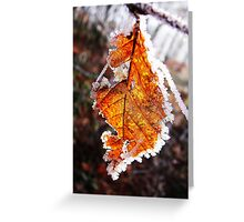 Orange fall leaf with white frost Greeting Card