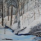 Winter in the Woods by towncrier
