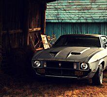 Mustang by Briana McNair
