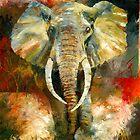 Charging African Elephant by Christiaan Bekker