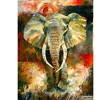 Charging African Elephant Photographic Print
