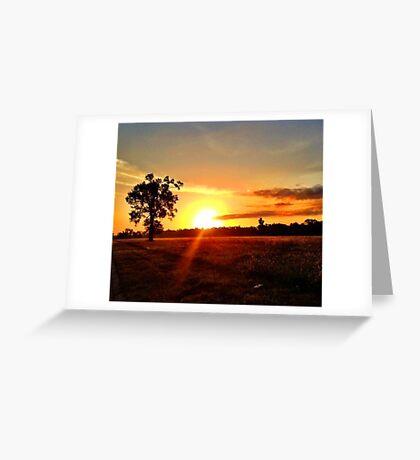 Southern Sunshine Greeting Card