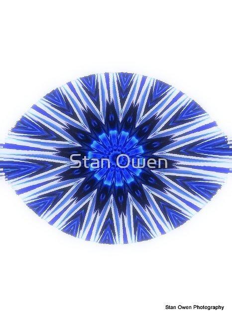 Blue Rose Iris by Stan Owen