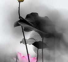 TRANDITIONGAL CHINESE PAINTING-lotus by deviloblivious