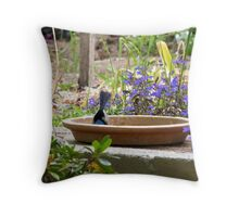 'OH WELL HEADS FIRST IT IS!' Superb Blue Wren, Mt. Pleasant S.A. Throw Pillow