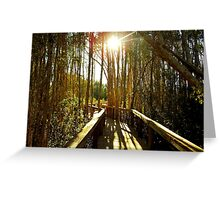 Swamp Trail Greeting Card