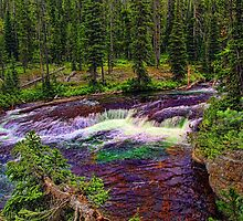 Cascade Acres - Falls River by Brenton Cooper