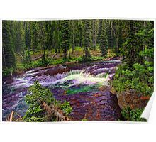 Cascade Acres - Falls River Poster