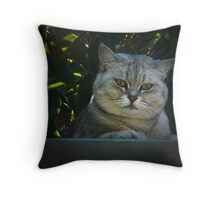 Cheshire Cat.1 Throw Pillow