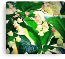 Soft Little Flowers Canvas Print