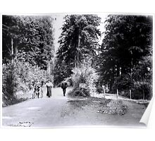 Cyclists in Stanley Park Poster