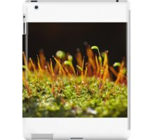 A group of very small beech trees iPad Case/Skin