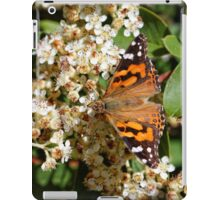 Australian Painted Lady Butterfly iPad Case/Skin