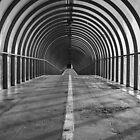 The Walkway by Stevie B