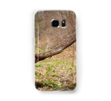 Fallen trees in a forest on springtime Samsung Galaxy Case/Skin