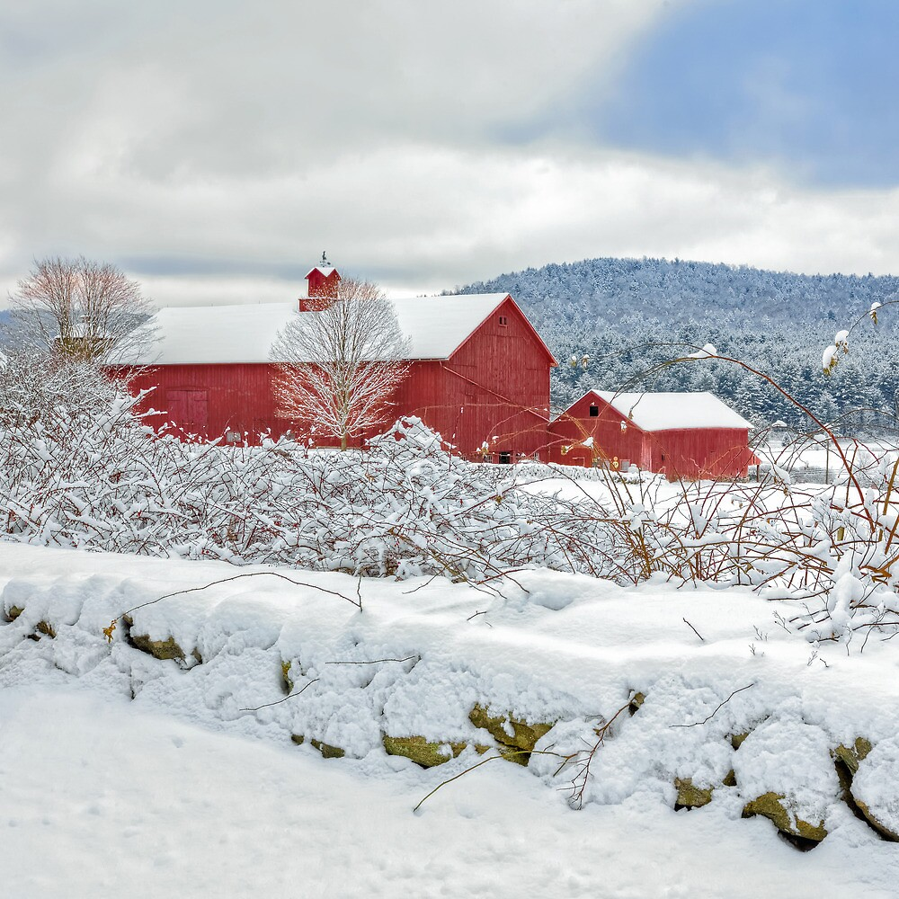 Winter In Connecticut  by Bill Wakeley