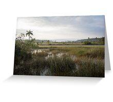 Morning, Everglades! Greeting Card
