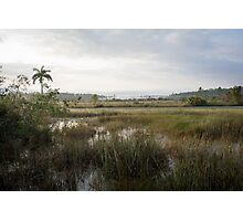 Morning, Everglades! Photographic Print