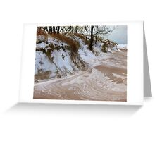 Winter Paints Greeting Card