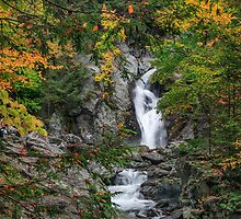 Bash Bish Falls  by Bill Wakeley