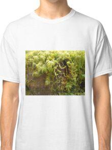Macro moss Classic T-Shirt