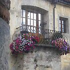 Flowers on the balcony by sstarlightss