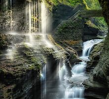 Rainbow Falls  by Bill Wakeley