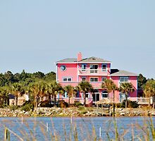 Pink Home by Cynthia48