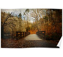 Walking into The Great Smoky Mountains Poster